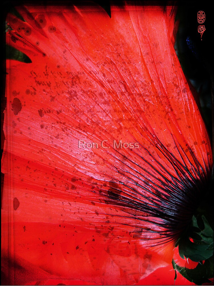 Book Flower by ronmoss