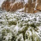 Granite outcrops, Mount Buffalo by Kevin McGennan