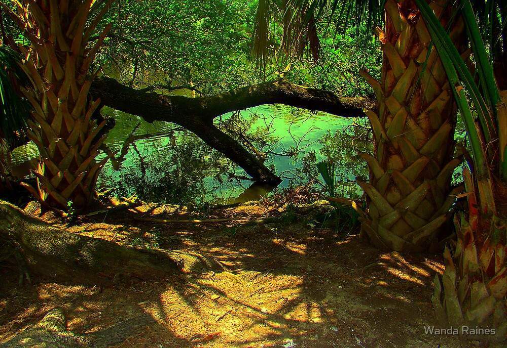 Shaded Area  Near The Lagoon by Wanda Raines