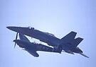 Spitfire & F/A-18A Hornet, Temora Airport, 2006 by muz2142