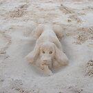 Beach Dog name SANDY by ShootingSardar