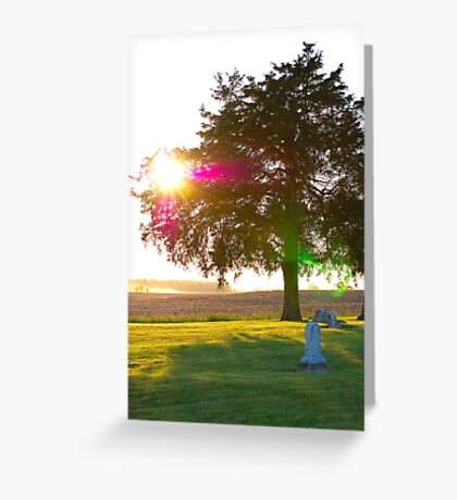 ...faith told me you would come get me... Greeting Card