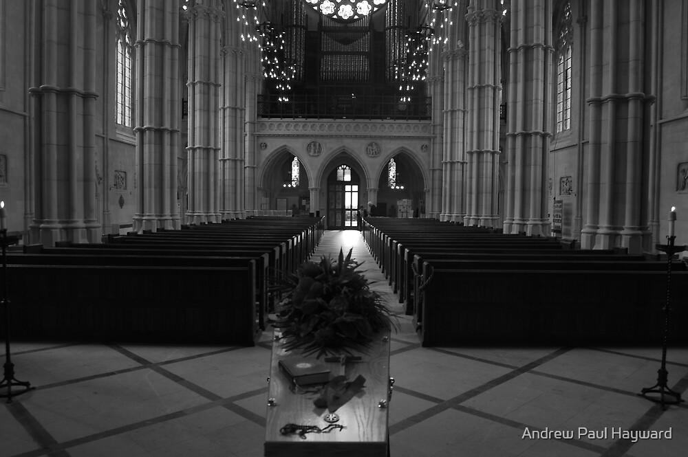 In Memory by Andrew Paul Hayward