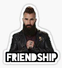 BB18/BB19 - Paul's Friendship Sticker