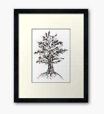 Tree sketch  Framed Print