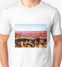 Desert in summer at Grand Canyon national park, USA T-Shirt