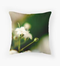 Softer side Throw Pillow