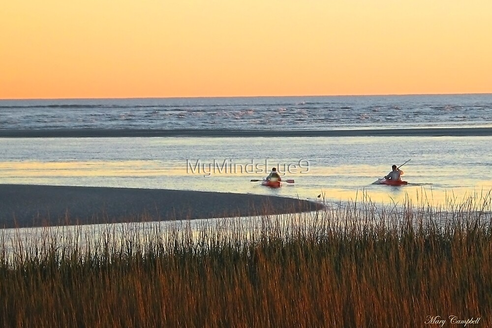 Heading Out at Dusk © by Mary Campbell