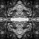 Sinister by Mel Brackstone