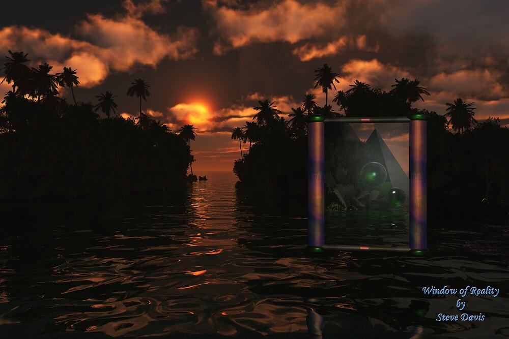Window of Reality by Steve Davis