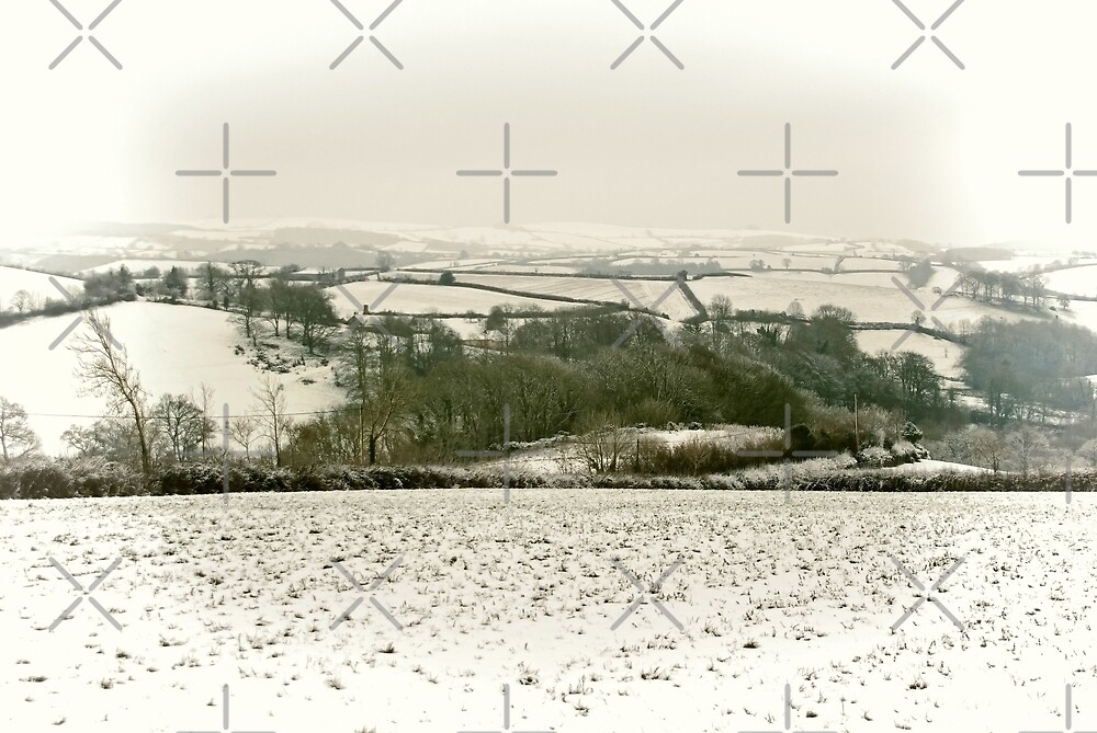 Snowcapped by Country  Pursuits