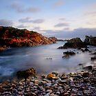 Sleeping Ocean by Angelika  Vogel