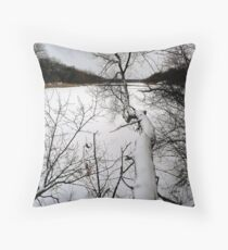 The Bold and the Beautiful Throw Pillow