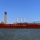 CSL Assiniboine and Factory panorama by marybedy