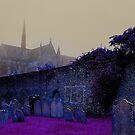Gothic Cathedral, Arundel 2 by Martin Rolt