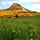 Roseberry Topping 3 by dougie1