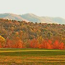 """View of the Smokies  from Mountain Home, Tennessee""... prints and products by Bob Hall©"