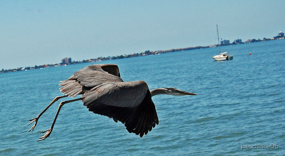 He'll Fly Away by joeschmoe96
