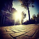 Shine street by tomasalma