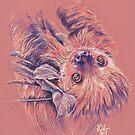 Let's Sloth Things Down by Paul-M-W