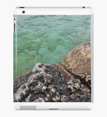 Tobermory Waterscape iPad Case/Skin