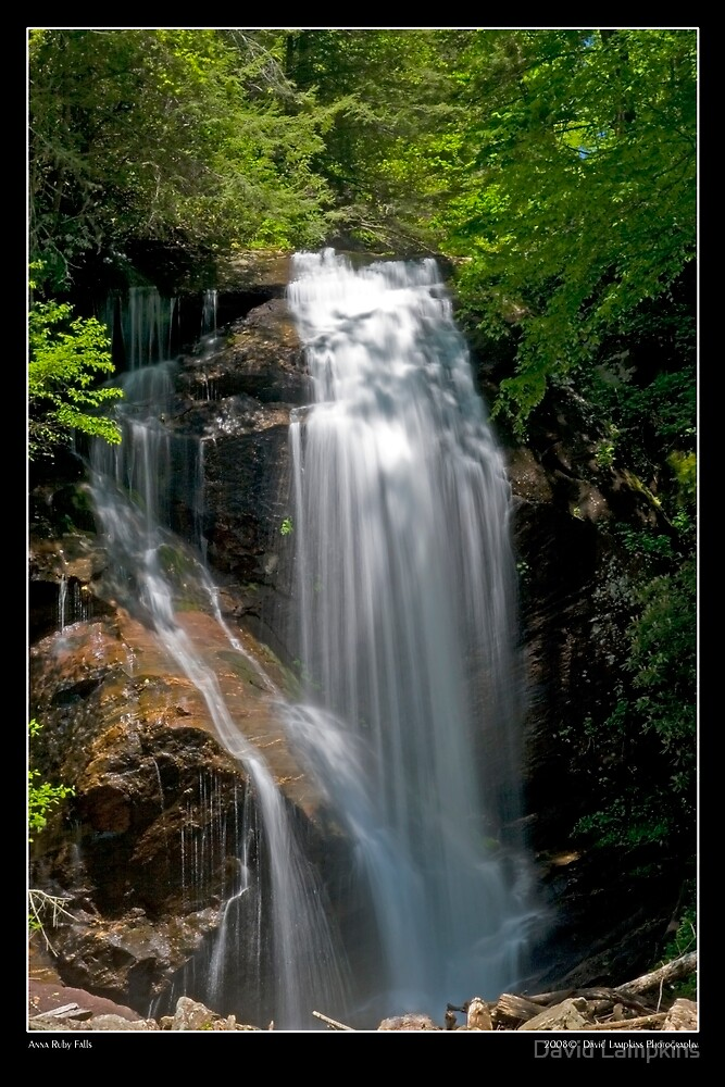 Anna Ruby Falls 1/2 by David Lampkins