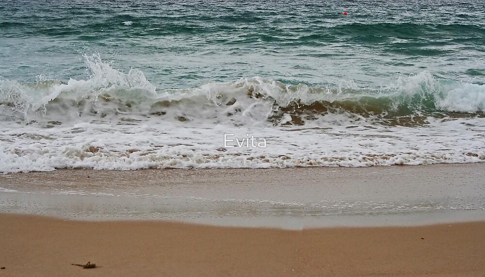 Warilla Waves by Evita