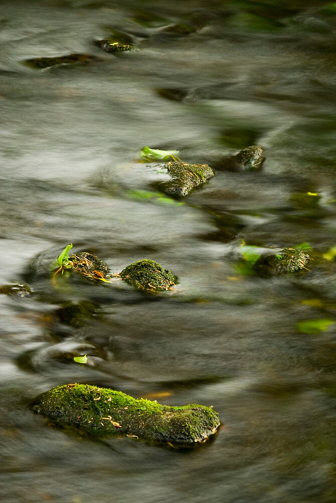 Rocks & Water by Ron Hindhaugh