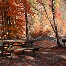 Picnic By the Loyalsock by Donna Sherwood