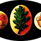 Mushrooms, Oak Leaf, Acorn by David Fraser