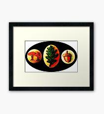 Mushrooms, Oak Leaf, Acorn Framed Print