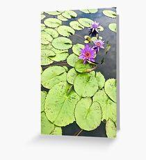 Vibrant Purple Lilypad Greeting Card