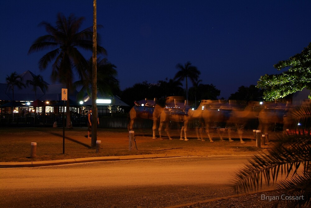 Mystical Camels at Cable Beach by Bryan Cossart