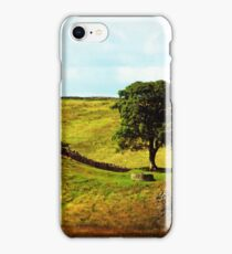 The Thieves Tree iPhone Case/Skin