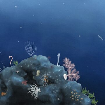 Deep ocean vista - Johnston Atoll by thevexedmuddler