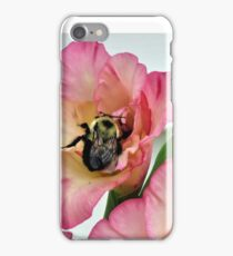 Bumble and Gladiolas iPhone Case/Skin