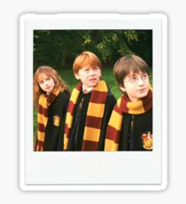 Hermione, Ron and Harry Sticker