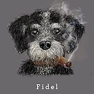 Fidel - The Havanese is the national dog of Cuba by Vin  Zzep