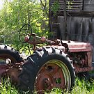 Old Tractor by Danielle Loscig