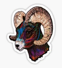 King of the Rams Sticker