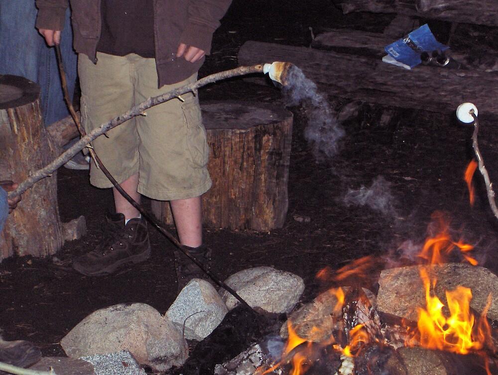 Campfire fun by richardbarker