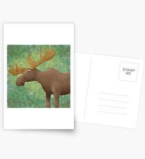 Moose Madness Postcards