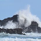 Rocks and Surf at Piha by lizdomett