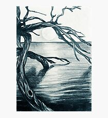 Drawing illustration of seascape. Tree in the water at sunset Photographic Print