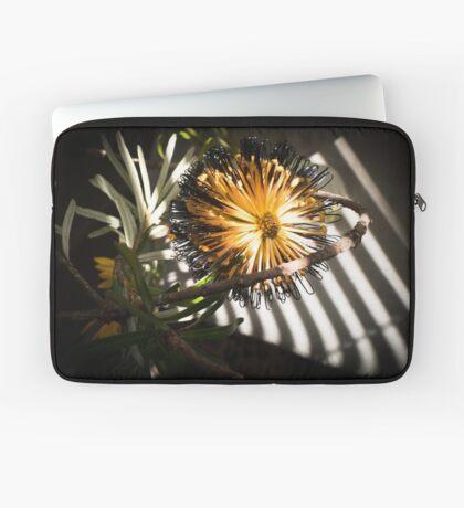 Banksia Still Life Laptop Sleeve