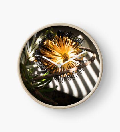 Banksia Still Life Clock