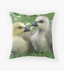 Lesser Snow Goose Goslings Throw Pillow