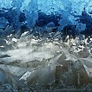 Icy Window by FrankieCat
