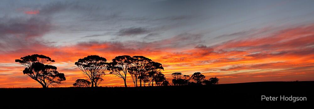 Farm Land Sunrise by Peter Hodgson