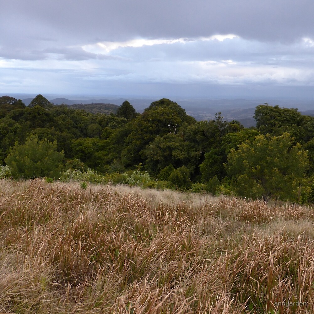 View from the Bunya Mountains by Anny Arden